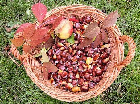 Maroni, Fall, Autumn, Sweet Chestnuts, Autumn Fruits
