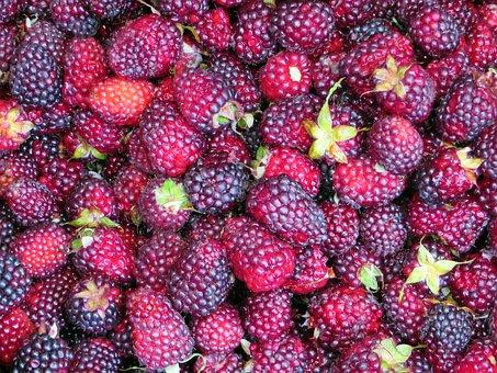 Raspberries, Market, Fruit, Power, Crates Of Fruit
