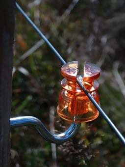 Insulator, Cow Fence, Cow Wire, Fencing, Isolated