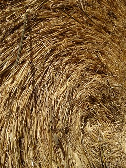 Straw, Straw Bales, Eddy, Wrapped, Rolled, Bale, Food