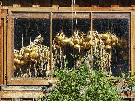 Hanging, Onions, Window, Hut, Veggie, Garden, Farm