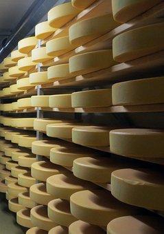 Cheese, Cheese Dairy, Body, Milk, Shelf, Storage, Stock