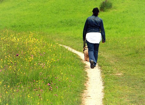 Away, Trail, Person, Woman, Dog, Immediately, Walk