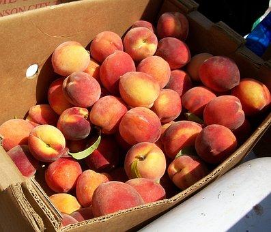 Peaches, Market, Organic, Bushel, Ripe, Produce