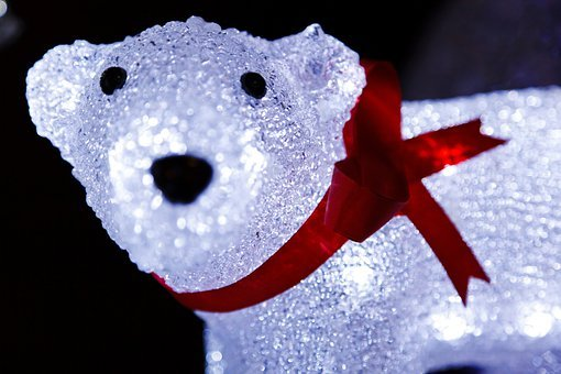 Animal, Arctic, Bear, Blue, Christmas, Cold, Cute