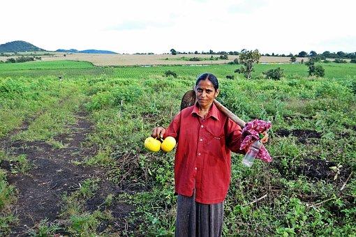 Farm Lady, Female, Worker, Farm, Hoe, Carrying