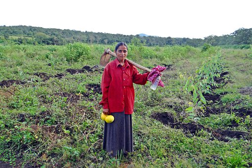 Farm Lady, Hoe, Carrying, Agriculture, Farming, Pumpkin