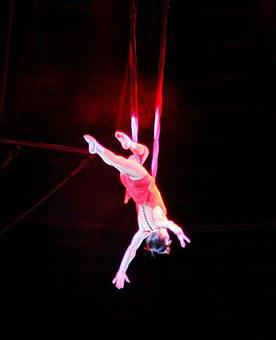 Circus, Trapez, Entertainment, Performance, Girl, Show