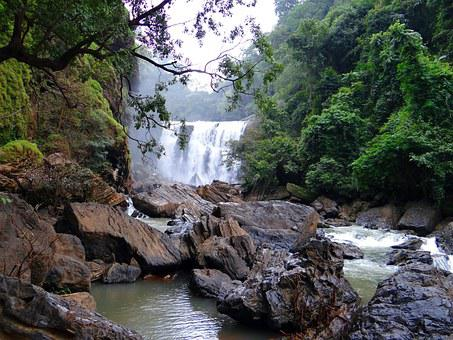 Sathodi Falls, Water Fall, Forest, Kali River
