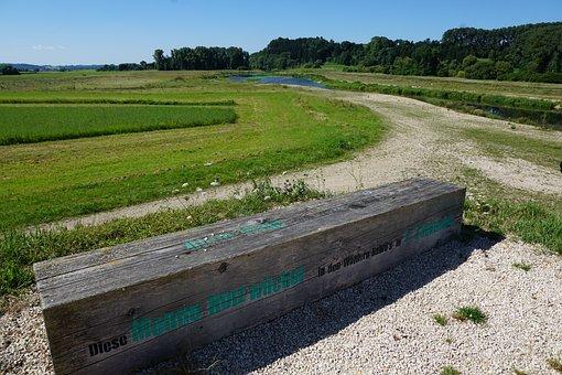Danube, Away, Wood, Meadow, Riedlingen, Nature, Bank