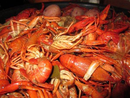 Crawfish, Food, Boiled, New Orleans, Crayfish, Seafood