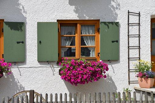 Flower, Window Flower, Window, Shutter, Facade, Head