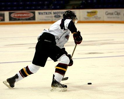 Hockey, Hockey Puck, Ice, Game, Ice Hockey, Stick, Goal