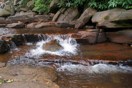 Water, Green, Growth, Spring, Water Drop, Watering