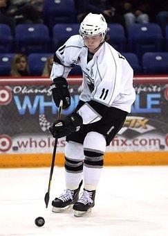 Hockey, Hockey Puck, Hockey Player, Ice Hockey, Game