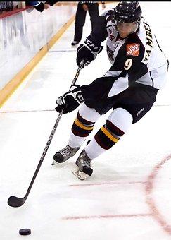 Hockey, Ice Hockey, Skater, Skates, Player, Ice, Stick