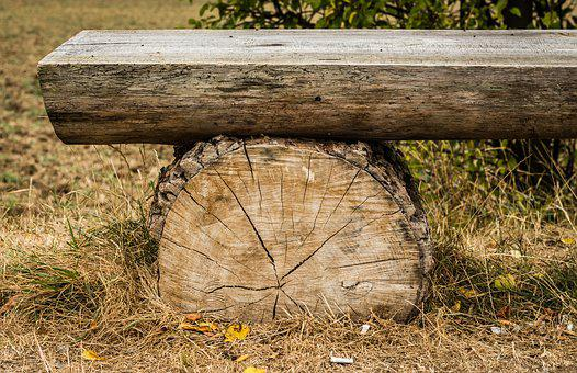 Bench, Wooden, Strain, Session, Sit, Texture, Autumn