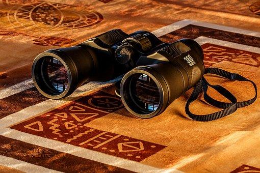 Binoculars, Birdwatching, Spy Glass, Spying, Dawn, Spy