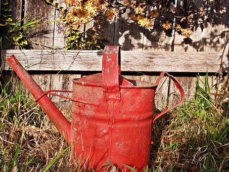 Watering Can, Red, Old, Rusty, Garden, Abandoned, Weeds