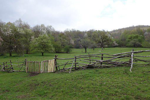 Fence, Village, Russia, Natur, Backwoods, Countryside