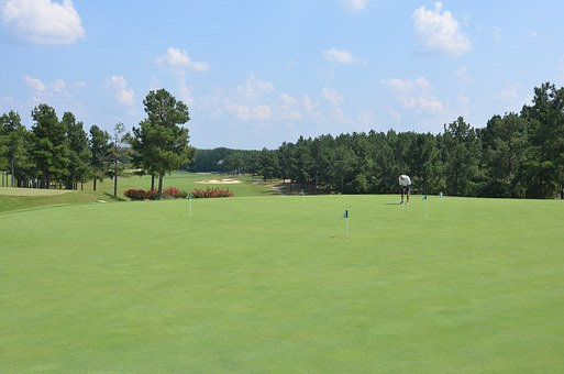 Golf, Course, Putting, Green, Golfer, Nature, Sky