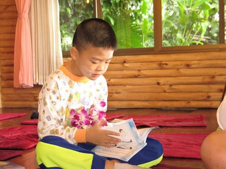 Child, Boy, Reading, Learning, Thailand, Tailor Seat