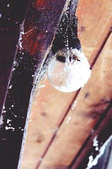 Light Bulb, Hut, Log Cabin, Vacation, Snow, Old, Scale