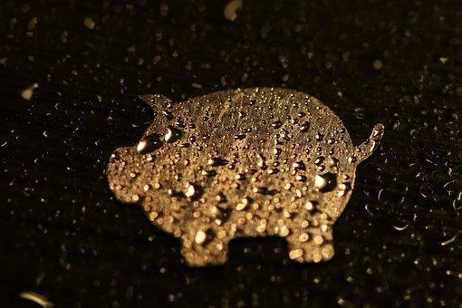 Luck, Pig, Artificial, Lucky Pig, Lucky Charm, Water