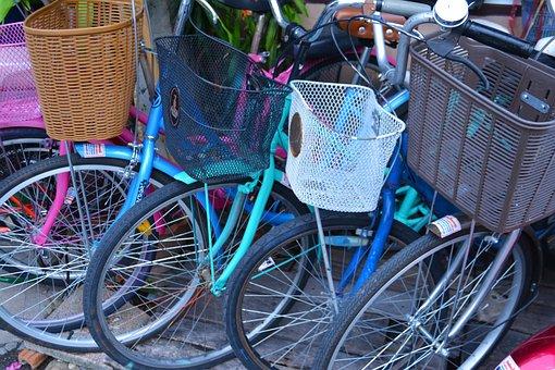 Bikes, Cycles, Wheels, Bicycle, Cycling, Activity