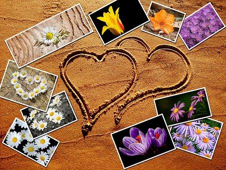 Flower, Beach, Heart, Summer, Sea, Love, White, Sand