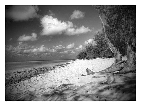 Heron Island, Australia, Black And White, Scenery