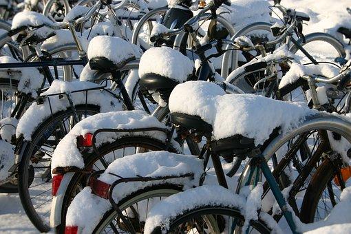 Snow, Winter, Cold, White, Nature, Season, Frost