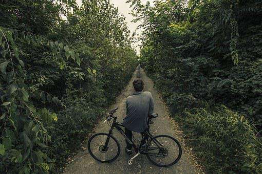 Bicycle, Long Road, Path, Nature, Forest, Green, Wild