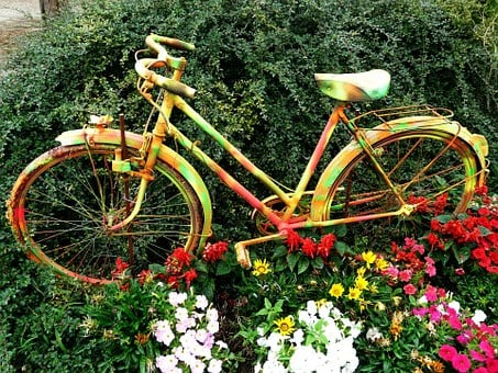 Flowers, Bicycle, Flower Bed, Bike, Cycle, Sport