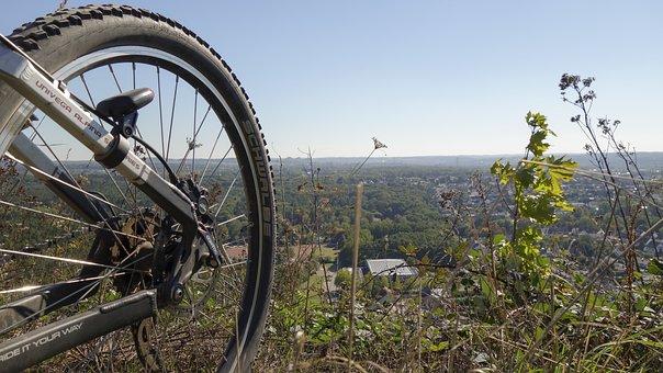 Bike, Mature, Mountain Bike, Wheel, Spokes, Cycling