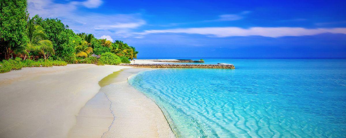 Beach, Sandy Beach, Paradise, Paradise Beach