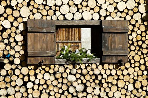 Window, Shutters, Ledge, Branch, Branch Sections, Spar