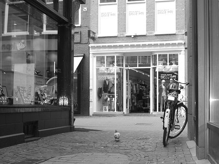 Europe, Street, Holland, Bicycle, Bike, Cycle, Activity