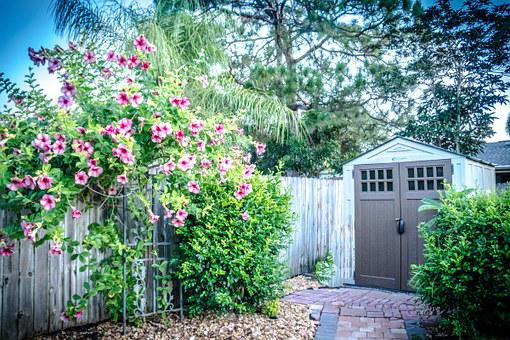 Shed, Yard, Flowers, Rustic, Wooden, Summer, Old