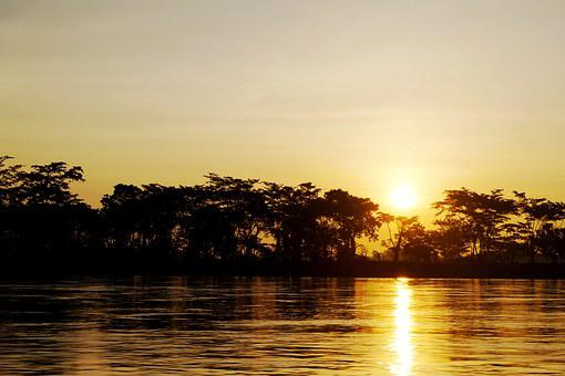 River, Colombia, Sun, Summer, Ecology, Shore, Trees