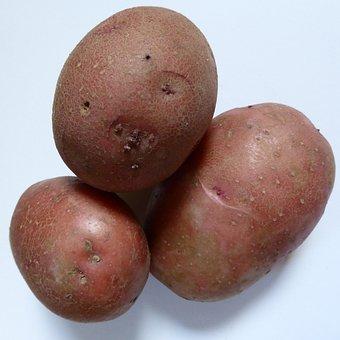 Potatoes, Bio, Nature, Agriculture, Vegetables, Eat