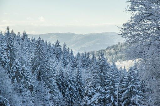 Winter In The Mountains, Beskids, Krynica