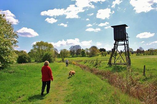 Hiking, Walk, Landscape, Nature, Hike, Go For A Walk