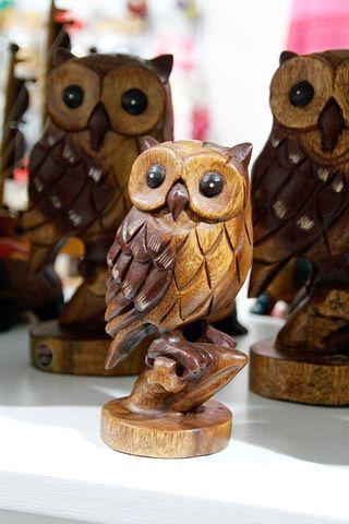 Owl, Eagle Owl, Young Eagle Owls, Bird, Feather
