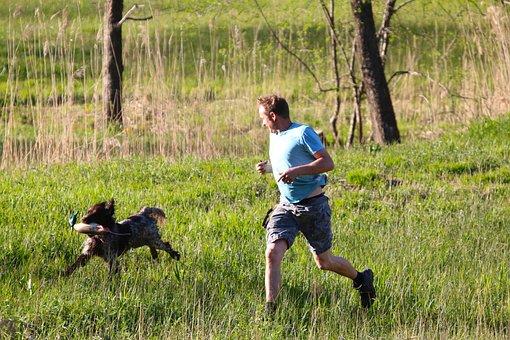 Meadow, Human, Dog, Retrieve, Plastic Duck