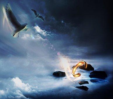 Pigeons, Sky, Flying, Top, Blue, Bird, Darkness, Still