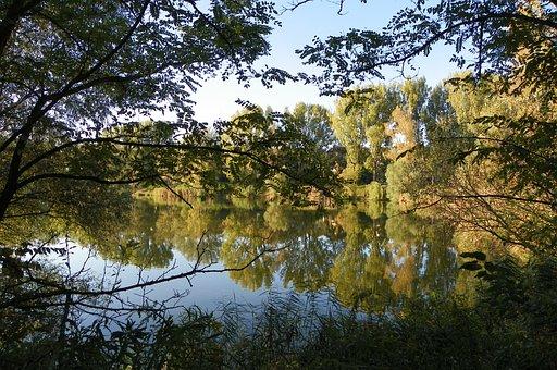 Slötyi, Lake, Trees, Nature, Waterfront, Lakeside