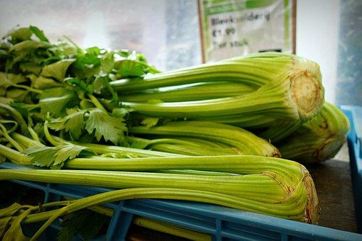 Celery, Shrub Celery, Vegetable, Fresh