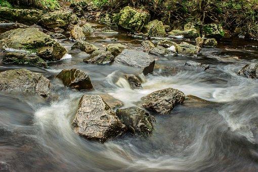 River, Bach, Water, Flow, Idyllic, Waters, Shrubs