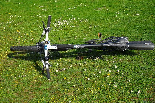 Mountain Bike, Bike, Bike Ride, Break, Rest, Meadow